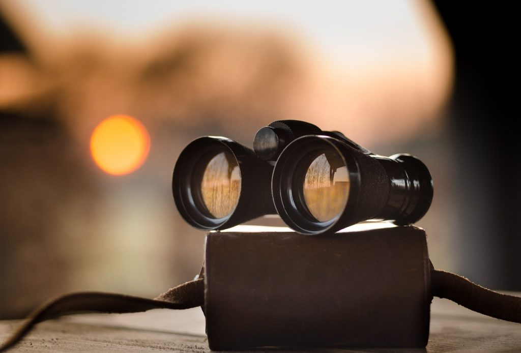 Image of binoculars. Bleum offer regular insightful articles through the Bleum blog.